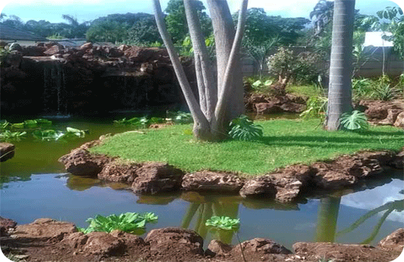 <h3>Water Features</h3>